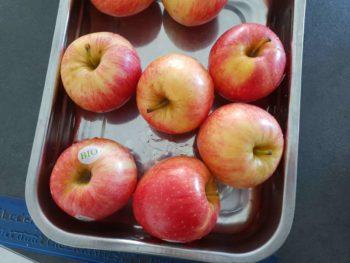Munissez-vous de bonnes pommes pour préparer votre tarte tatin, lavez-les