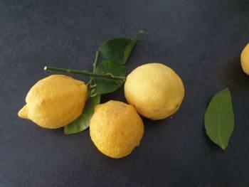 Pour cette recette de cake au citron, je vous conseille de choisir de bons citrons, par exemple des citrons d'Italie quand c'est la saison (savoureux et peu acide)