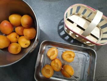Laver vos abricots mûrs, les dénoyauter, les enrober d'un peu de sucre